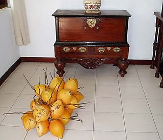 Foyer-KingCoconuts1